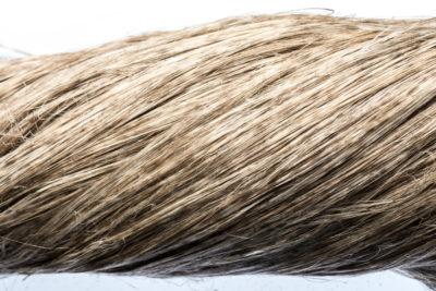quality fiber 1